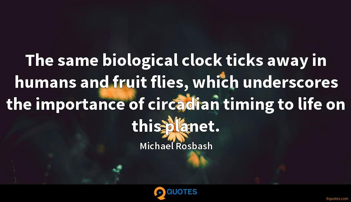 The same biological clock ticks away in humans and fruit flies, which underscores the importance of circadian timing to life on this planet.
