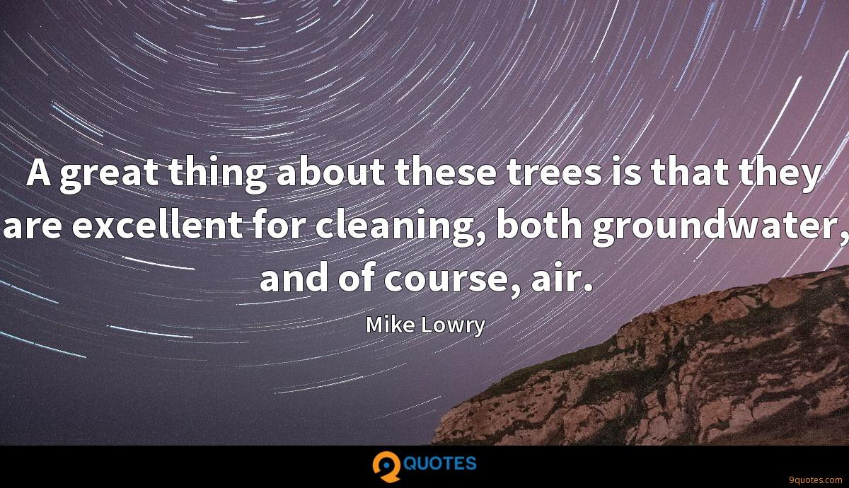 A great thing about these trees is that they are excellent for cleaning, both groundwater, and of course, air.