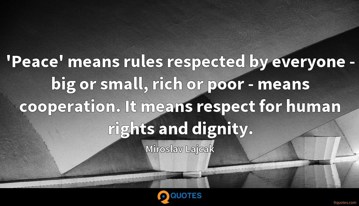 'Peace' means rules respected by everyone - big or small, rich or poor - means cooperation. It means respect for human rights and dignity.