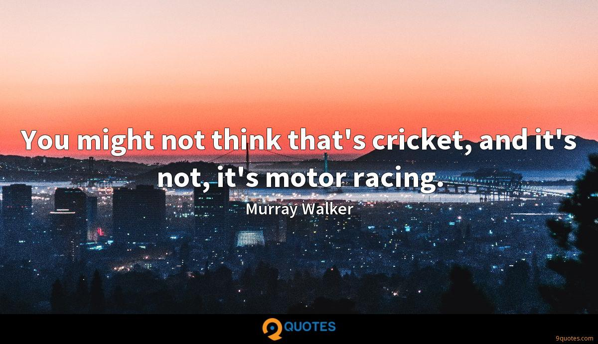 You might not think that's cricket, and it's not, it's motor racing.