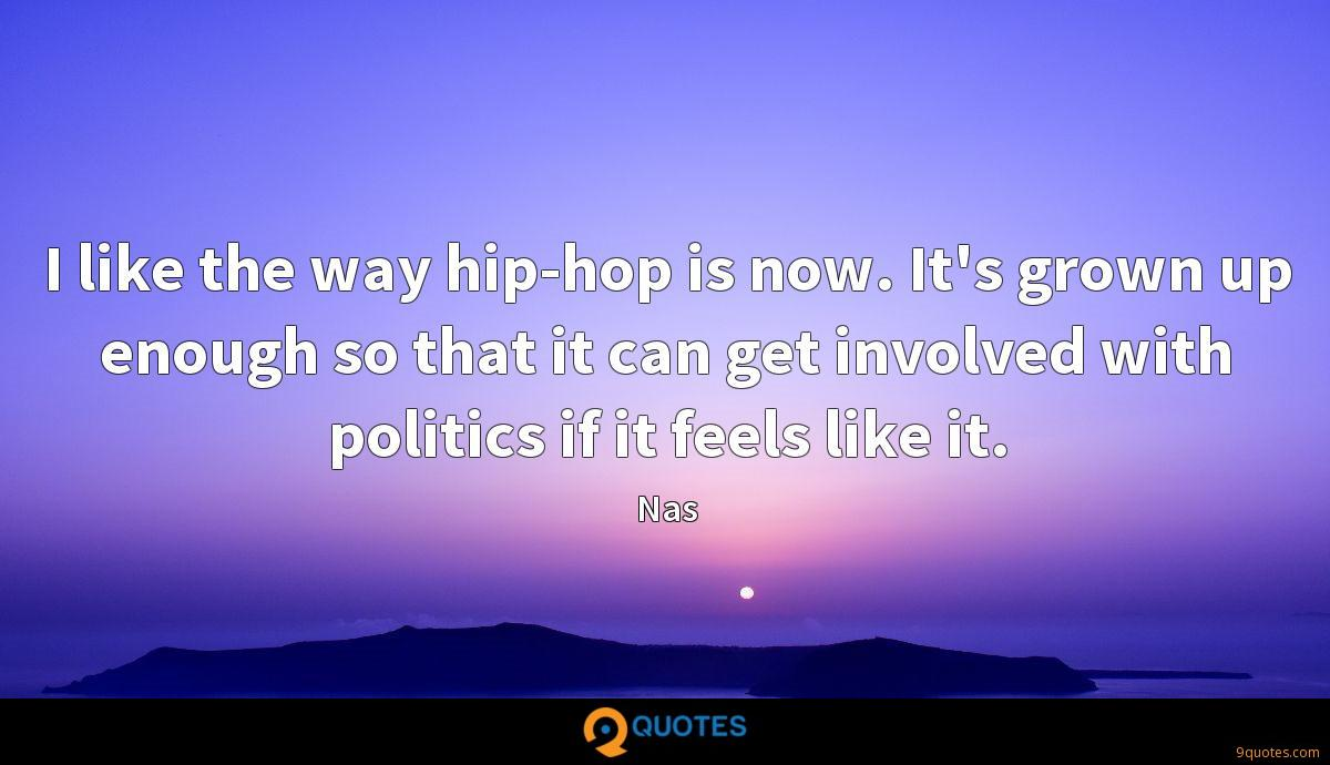 I like the way hip-hop is now. It's grown up enough so that it can get involved with politics if it feels like it.