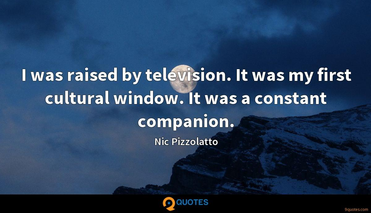 I was raised by television. It was my first cultural window. It was a constant companion.