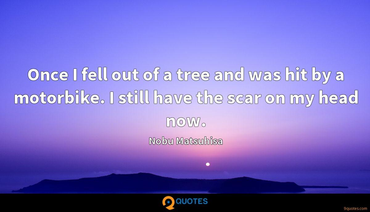 Once I fell out of a tree and was hit by a motorbike. I still have the scar on my head now.