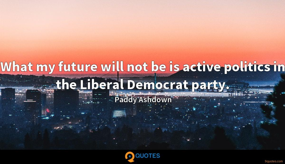 What my future will not be is active politics in the Liberal Democrat party.