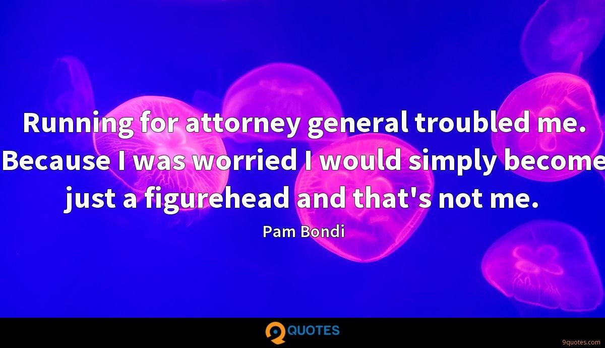 Running for attorney general troubled me. Because I was worried I would simply become just a figurehead and that's not me.
