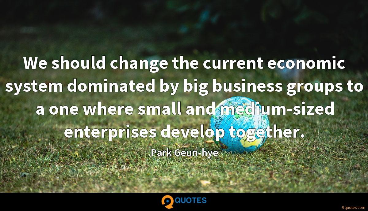 We should change the current economic system dominated by big business groups to a one where small and medium-sized enterprises develop together.