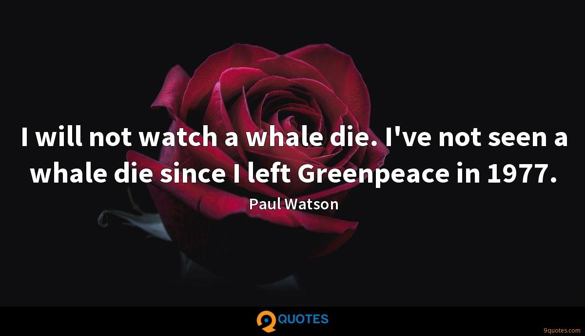 I will not watch a whale die. I've not seen a whale die since I left Greenpeace in 1977.