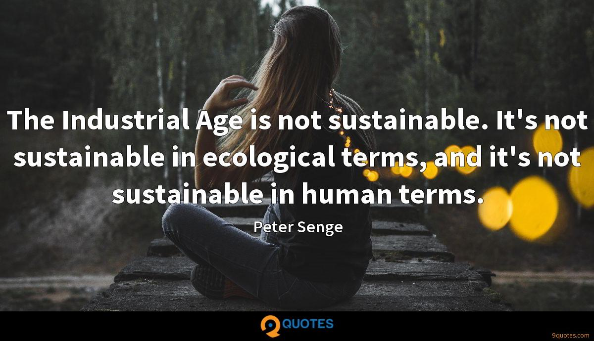 The Industrial Age is not sustainable. It's not sustainable in ecological terms, and it's not sustainable in human terms.