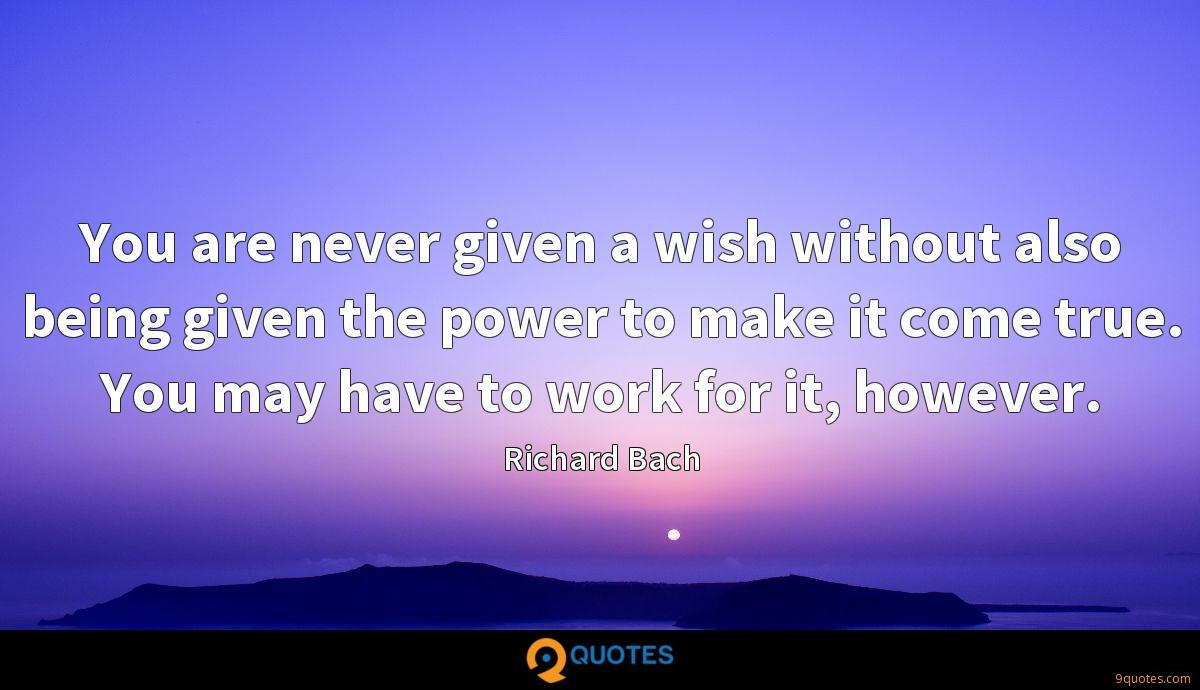 You are never given a wish without also being given the power to make it come true. You may have to work for it, however.