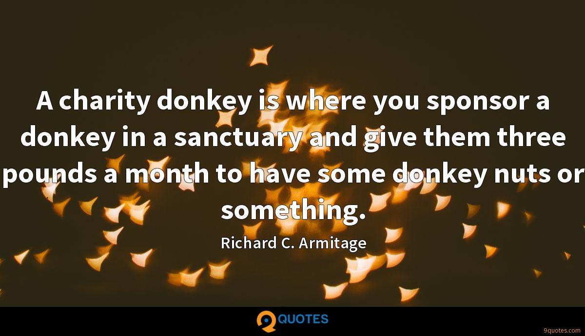 A charity donkey is where you sponsor a donkey in a sanctuary and give them three pounds a month to have some donkey nuts or something.
