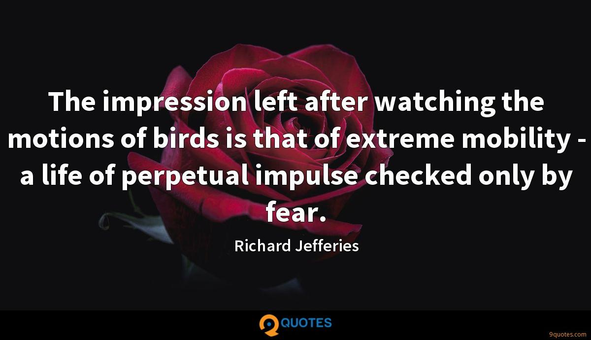 The impression left after watching the motions of birds is that of extreme mobility - a life of perpetual impulse checked only by fear.