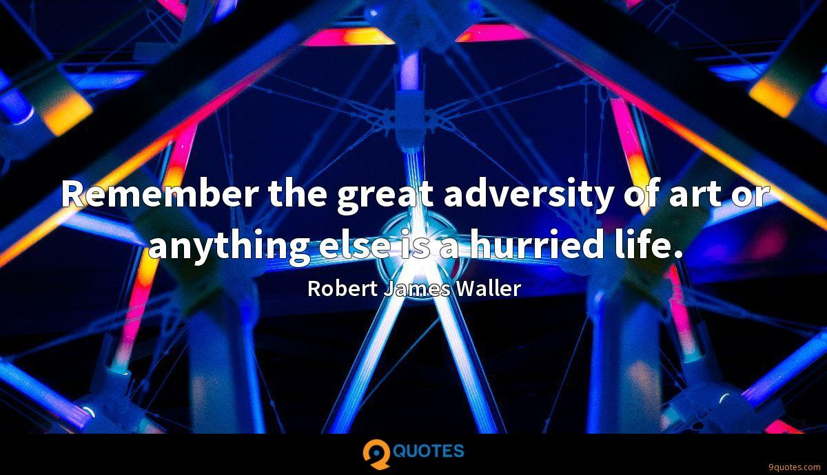 Remember the great adversity of art or anything else is a hurried life.