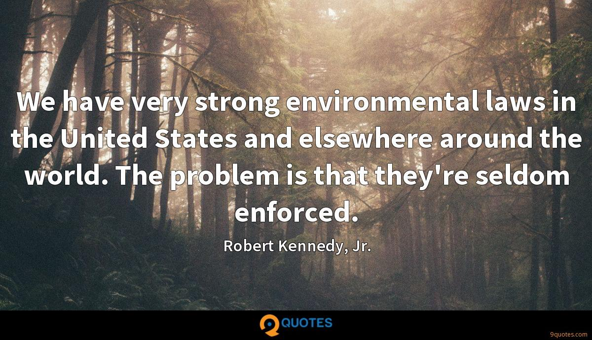 We have very strong environmental laws in the United States and elsewhere around the world. The problem is that they're seldom enforced.
