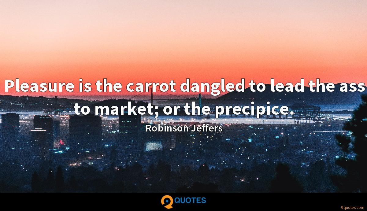 Pleasure is the carrot dangled to lead the ass to market; or the precipice.