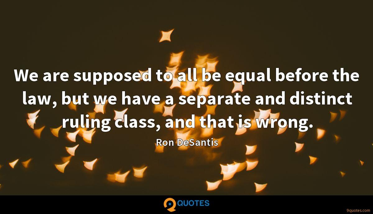We are supposed to all be equal before the law, but we have a separate and distinct ruling class, and that is wrong.