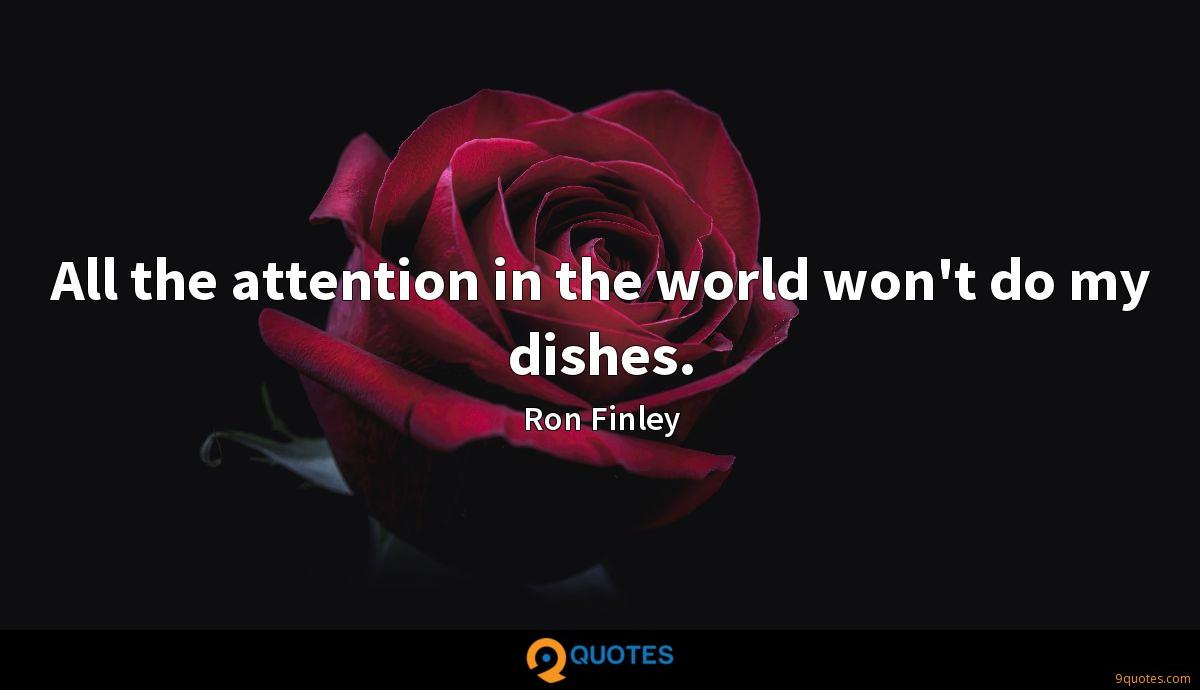 All the attention in the world won't do my dishes.