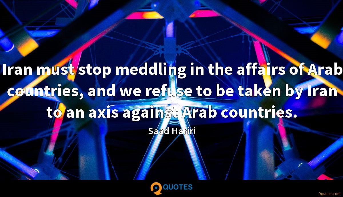Iran must stop meddling in the affairs of Arab countries, and we refuse to be taken by Iran to an axis against Arab countries.