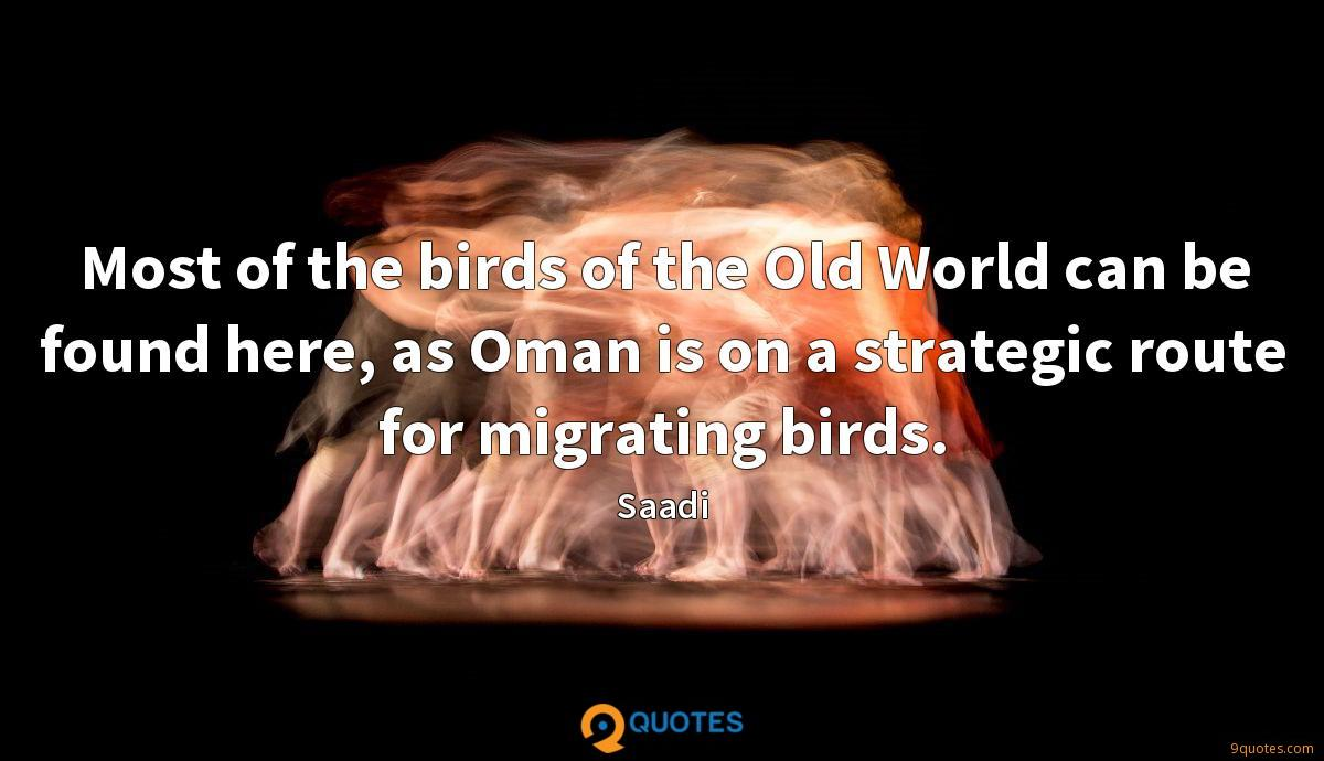 Most of the birds of the Old World can be found here, as Oman is on a strategic route for migrating birds.