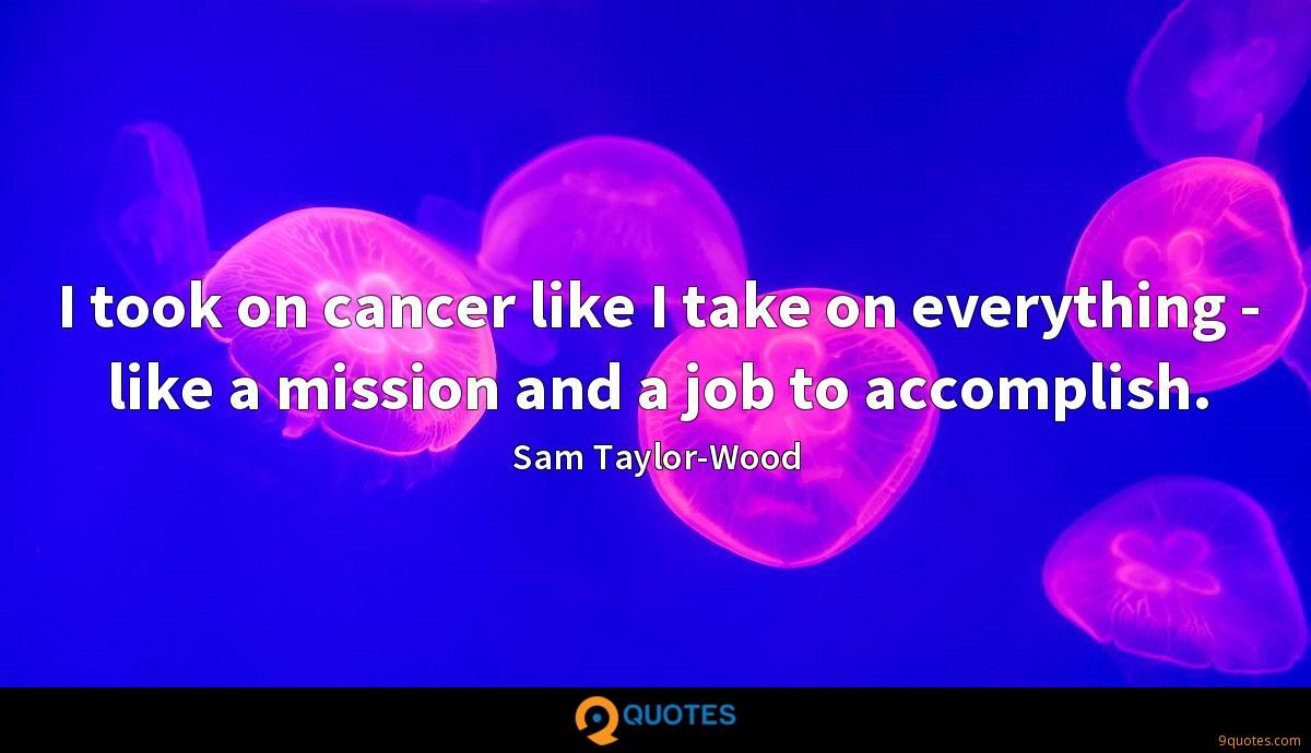 I took on cancer like I take on everything - like a mission and a job to accomplish.