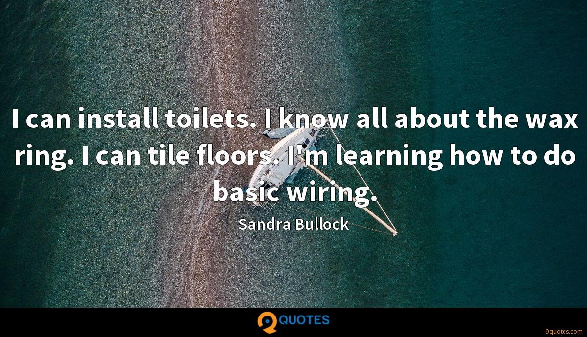 I can install toilets. I know all about the wax ring. I can tile floors. I'm learning how to do basic wiring.