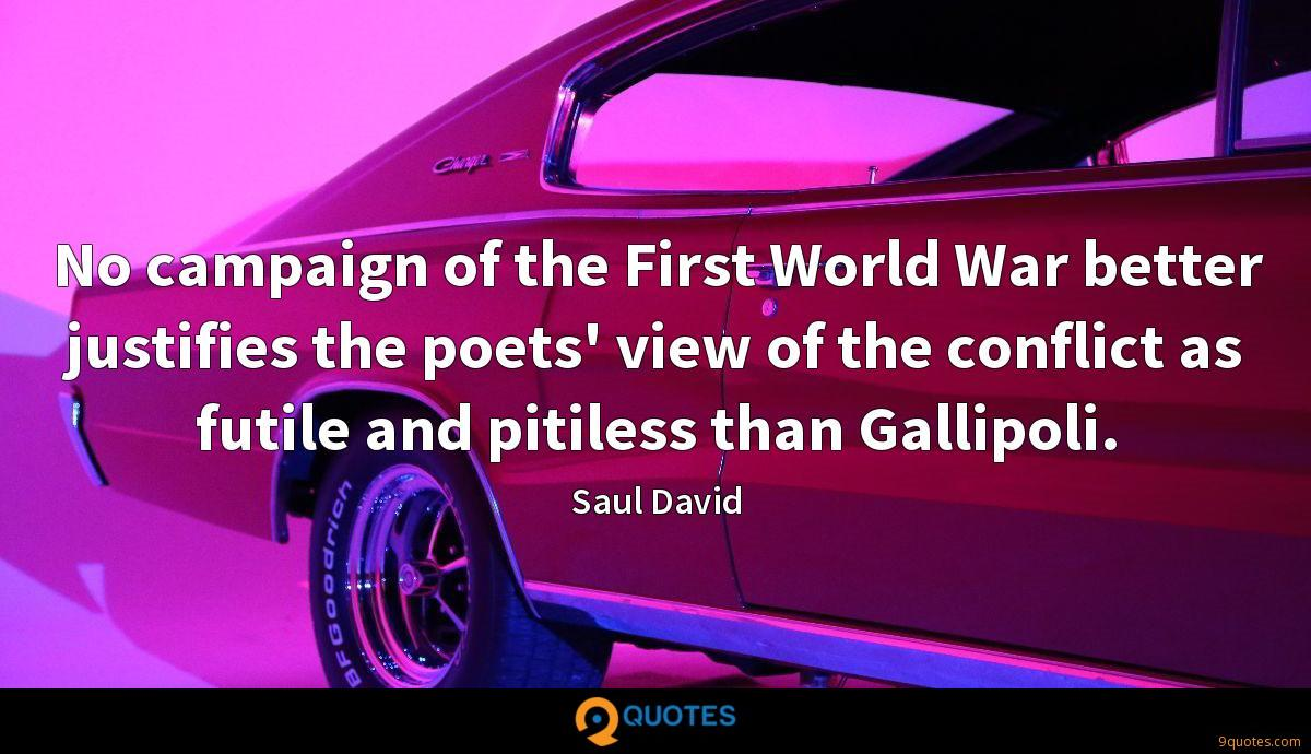 No campaign of the First World War better justifies the poets' view of the conflict as futile and pitiless than Gallipoli.