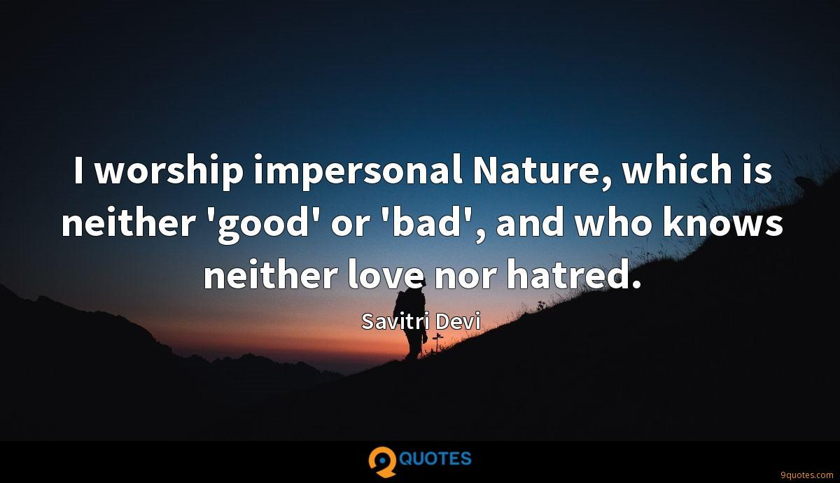 I worship impersonal Nature, which is neither 'good' or 'bad', and who knows neither love nor hatred.