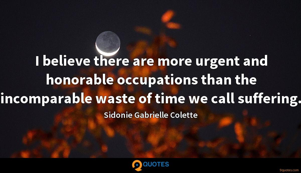 I believe there are more urgent and honorable occupations than the incomparable waste of time we call suffering.