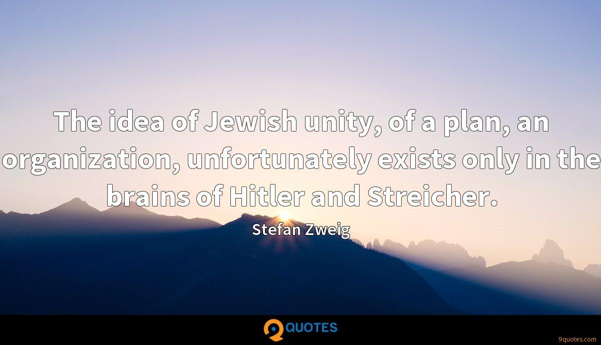 The idea of Jewish unity, of a plan, an organization, unfortunately exists only in the brains of Hitler and Streicher.
