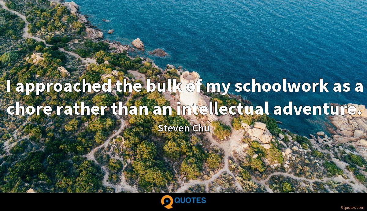 I approached the bulk of my schoolwork as a chore rather than an intellectual adventure.