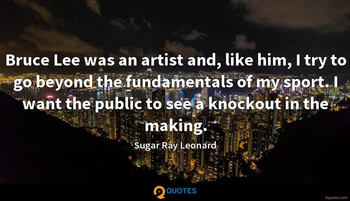 Bruce Lee was an artist and, like him, I try to go beyond the fundamentals of my sport. I want the public to see a knockout in the making.