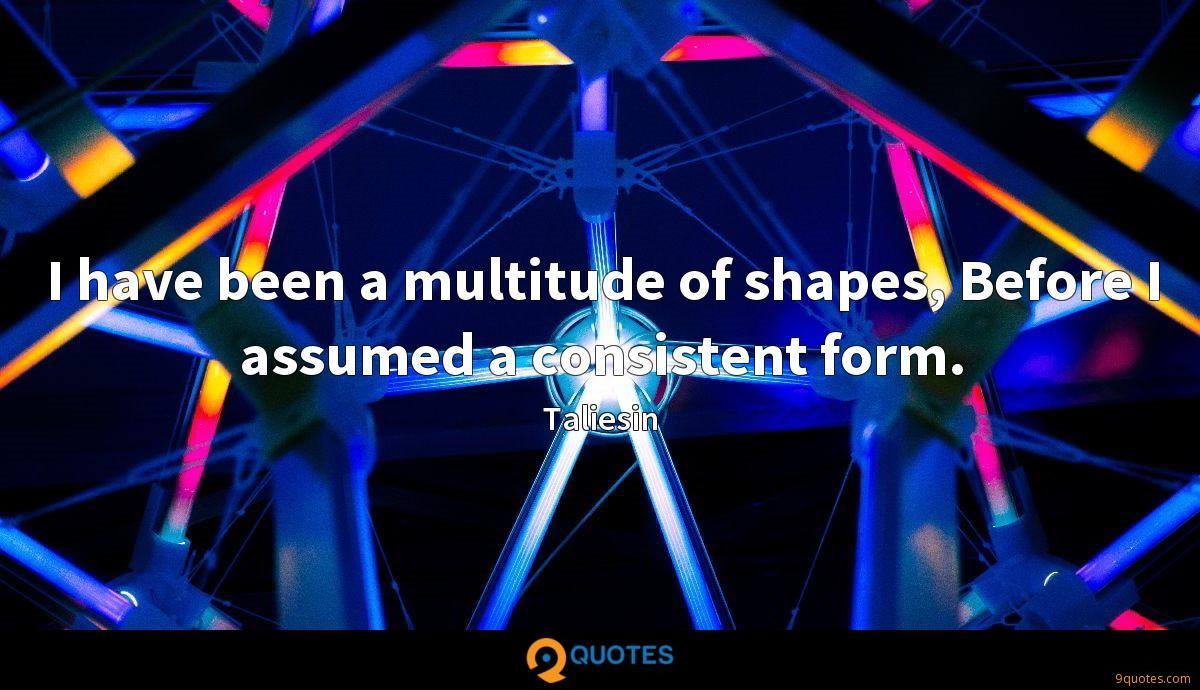 I have been a multitude of shapes, Before I assumed a consistent form.