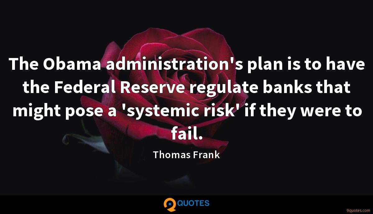 The Obama administration's plan is to have the Federal Reserve regulate banks that might pose a 'systemic risk' if they were to fail.