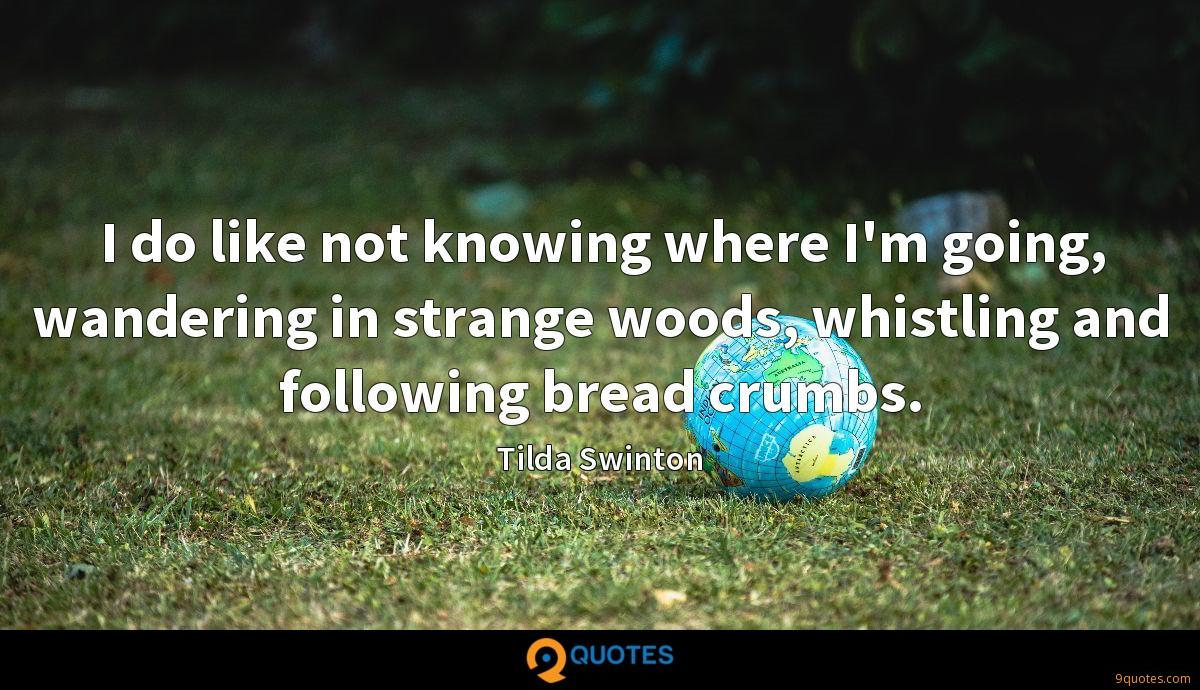 I do like not knowing where I'm going, wandering in strange woods, whistling and following bread crumbs.