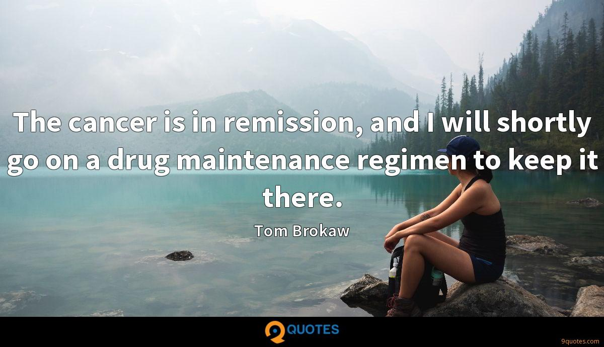 The cancer is in remission, and I will shortly go on a drug maintenance regimen to keep it there.
