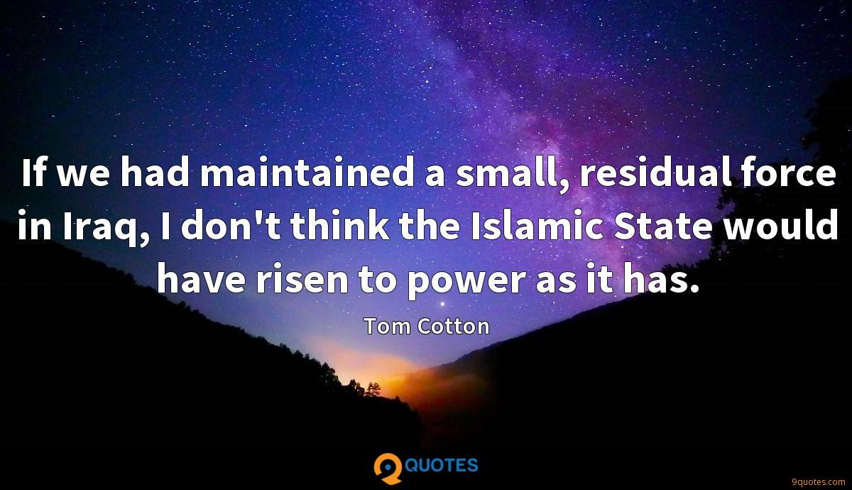 If we had maintained a small, residual force in Iraq, I don't think the Islamic State would have risen to power as it has.