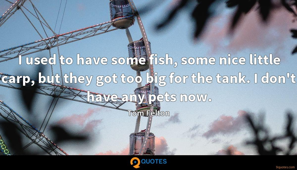 I used to have some fish, some nice little carp, but they got too big for the tank. I don't have any pets now.