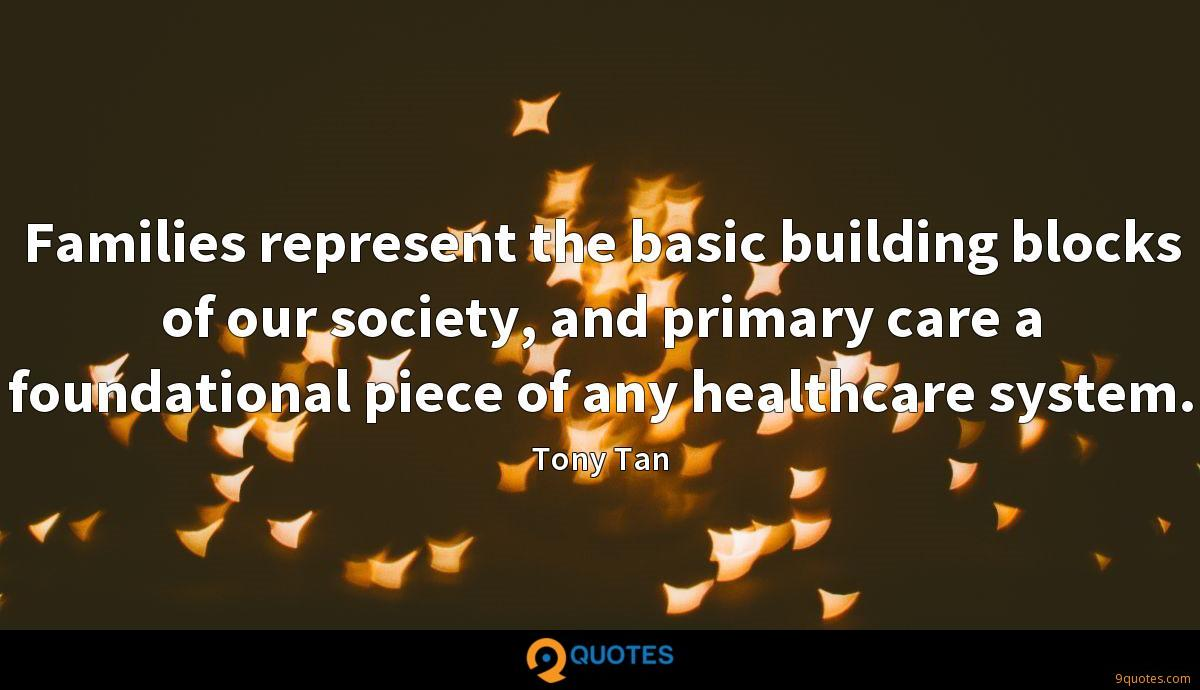 Families represent the basic building blocks of our society, and primary care a foundational piece of any healthcare system.