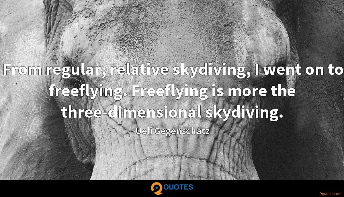 From regular, relative skydiving, I went on to freeflying. Freeflying is more the three-dimensional skydiving.