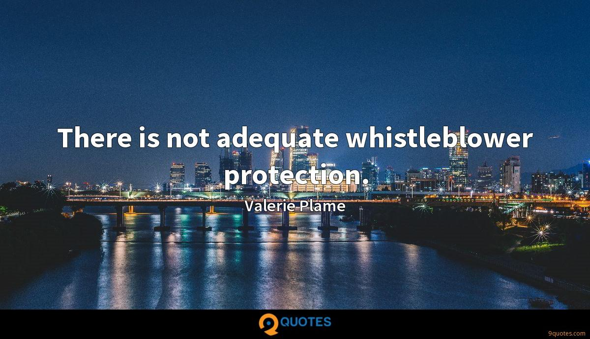 There is not adequate whistleblower protection.