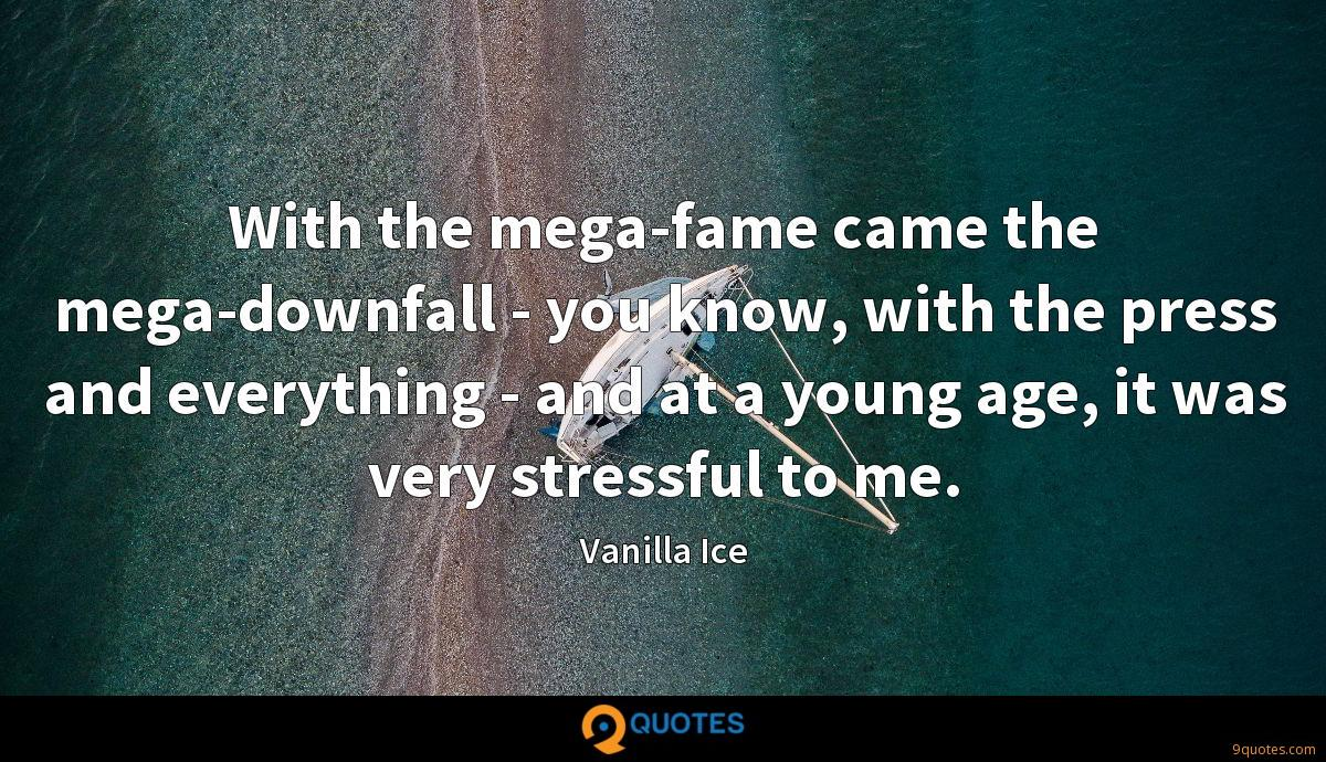 With the mega-fame came the mega-downfall - you know, with the press and everything - and at a young age, it was very stressful to me.