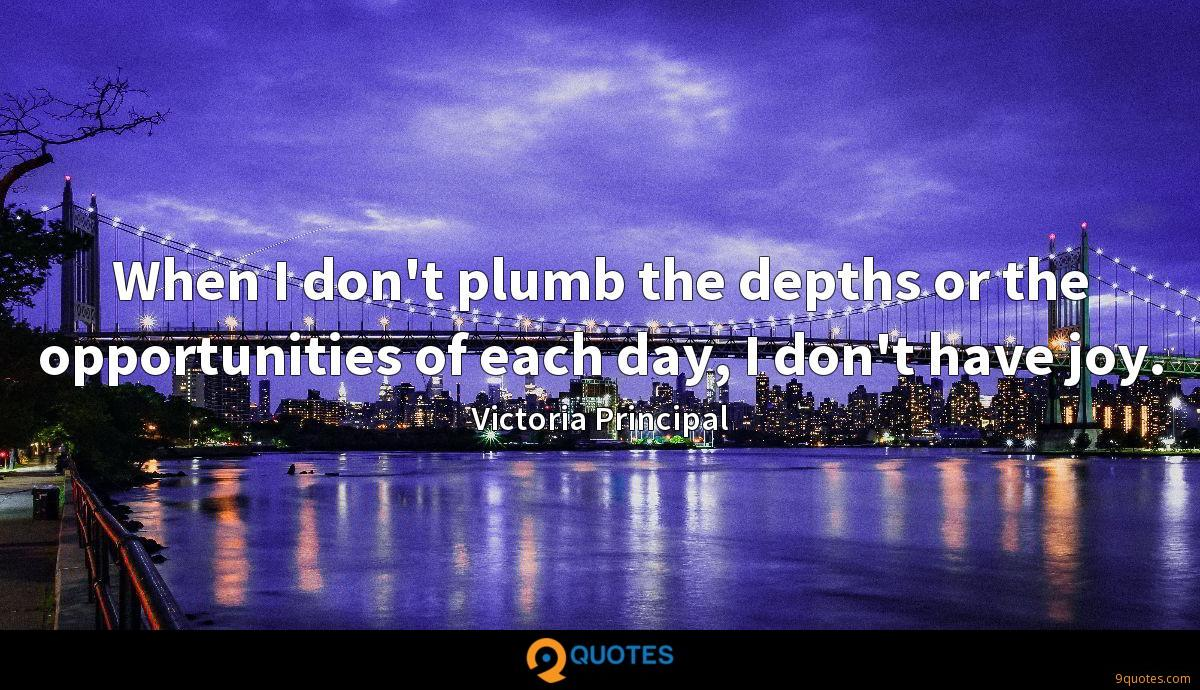 When I don't plumb the depths or the opportunities of each day, I don't have joy.