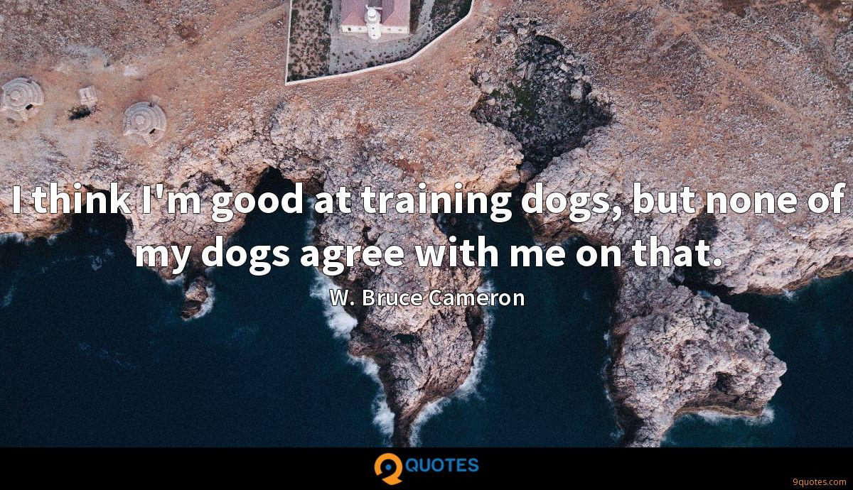 I think I'm good at training dogs, but none of my dogs agree with me on that.