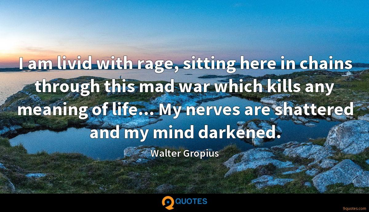 I am livid with rage, sitting here in chains through this mad war which kills any meaning of life... My nerves are shattered and my mind darkened.
