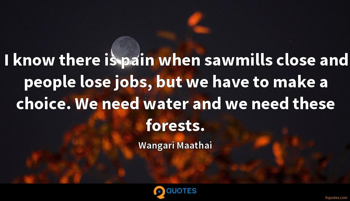 I know there is pain when sawmills close and people lose jobs, but we have to make a choice. We need water and we need these forests.