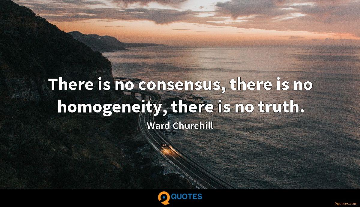 There is no consensus, there is no homogeneity, there is no truth.