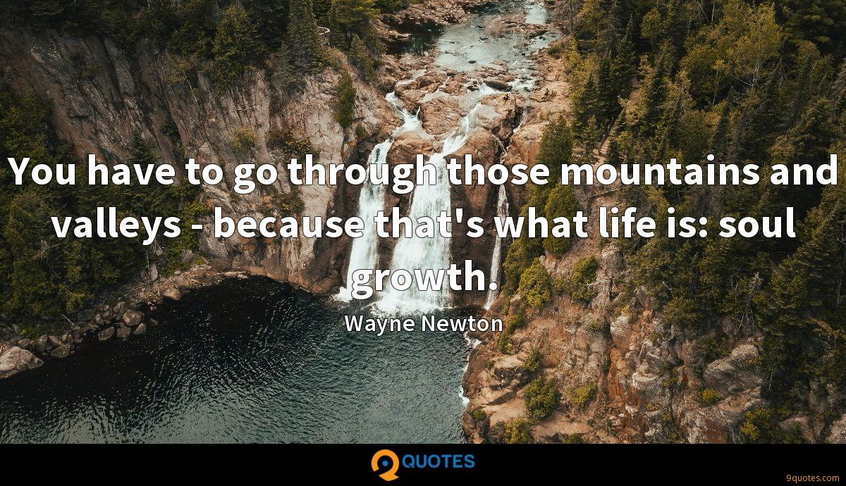 You have to go through those mountains and valleys - because that's what life is: soul growth.