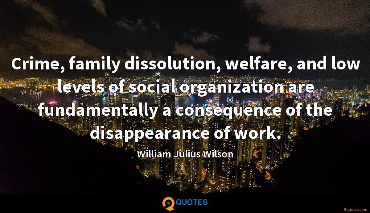 Crime, family dissolution, welfare, and low levels of social organization are fundamentally a consequence of the disappearance of work.