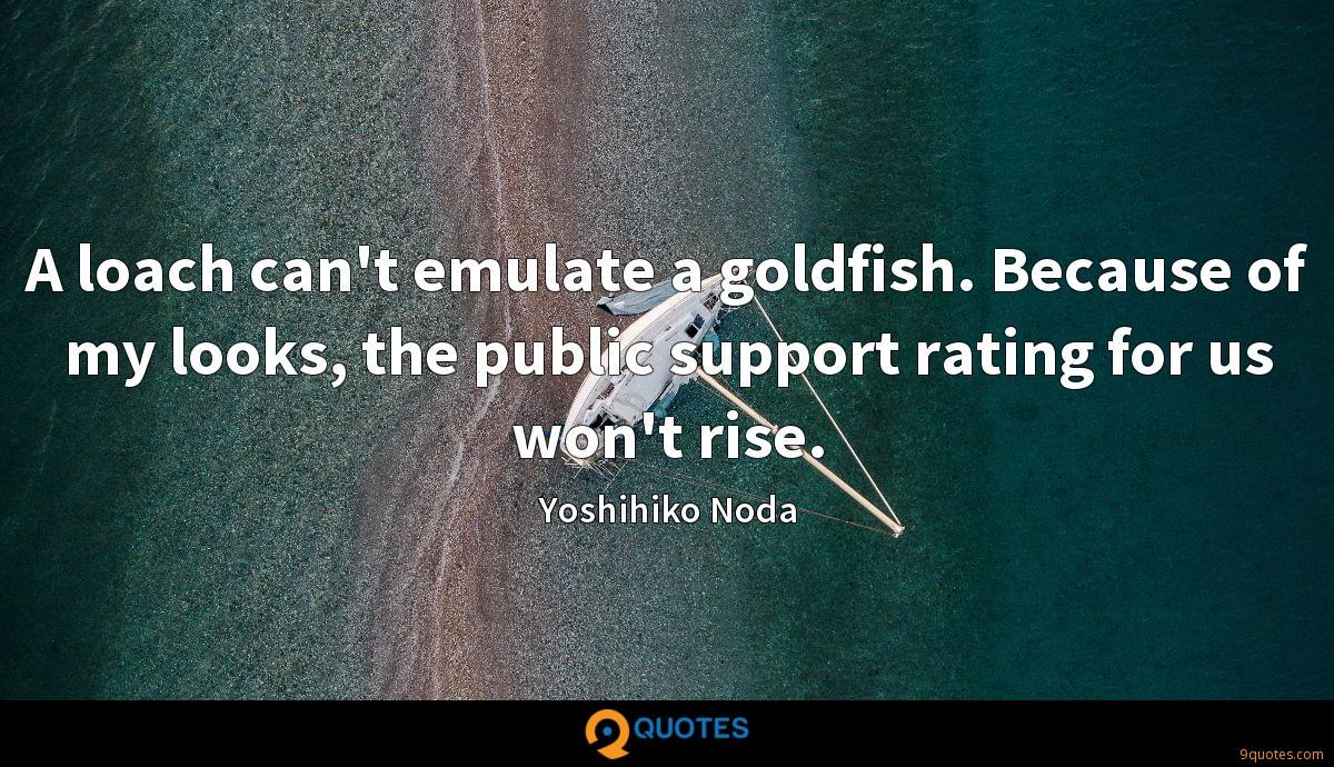 A loach can't emulate a goldfish. Because of my looks, the public support rating for us won't rise.