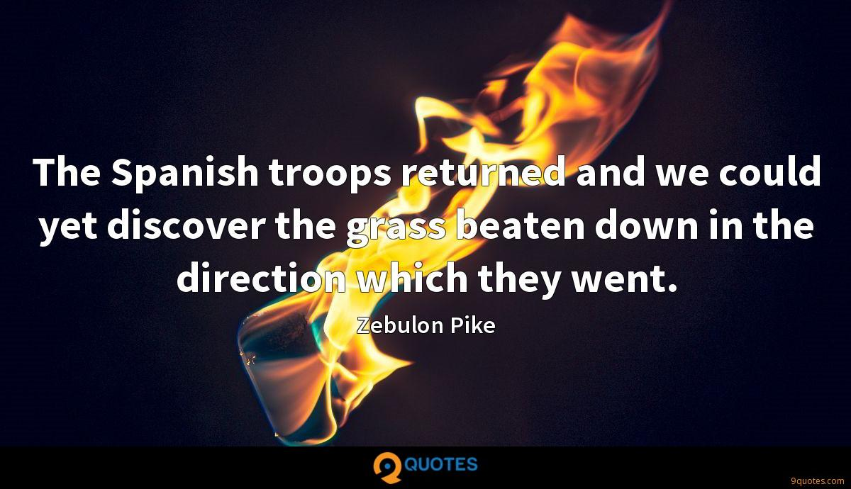 The Spanish troops returned and we could yet discover the grass beaten down in the direction which they went.