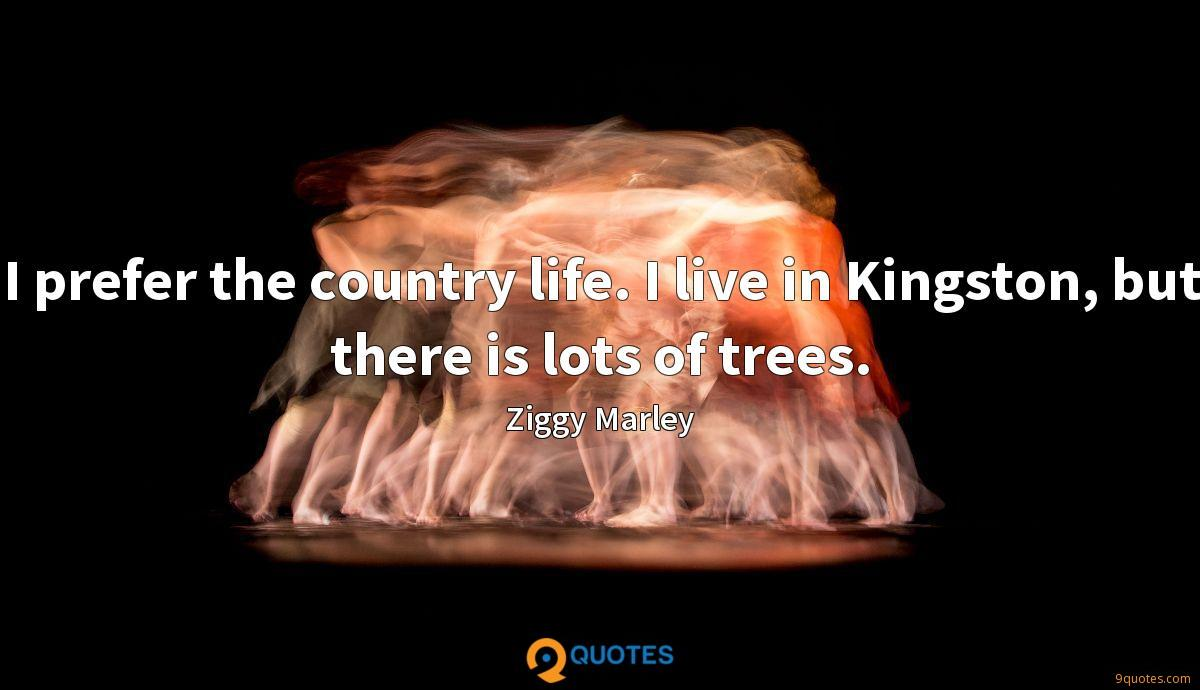 I prefer the country life. I live in Kingston, but there is lots of trees.